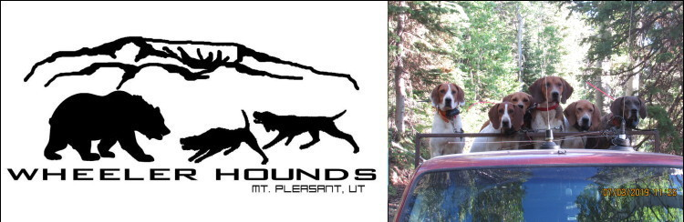 Hound For Sale